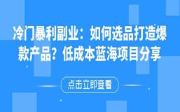冷门爆利副业:如何选品打造爆款产品?低成本蓝海项目分享