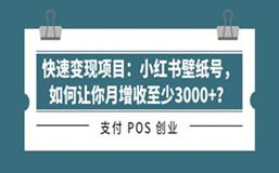 快速变现项目:小红书壁纸号,如何让你月增收至少3000+?